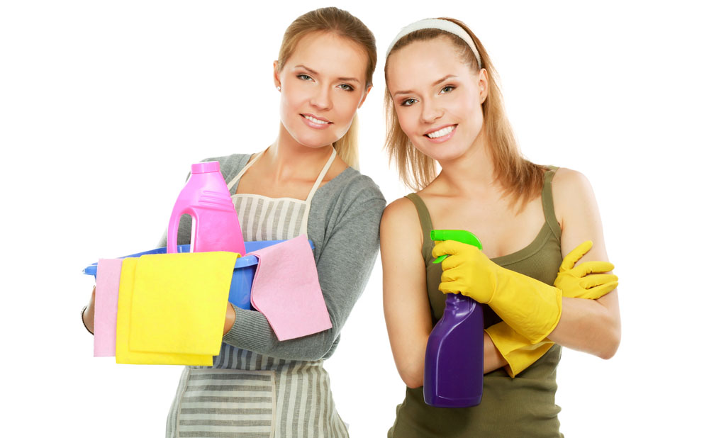 Download Maid Service Landing Page Design   BUYLPDESIGN Blog