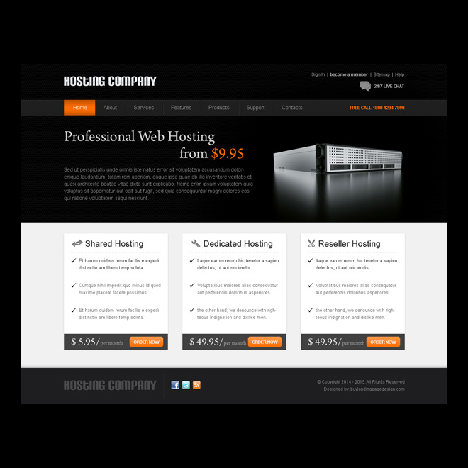 professional web hosting appealing and effective web hosting website template psd Website Template PSD example