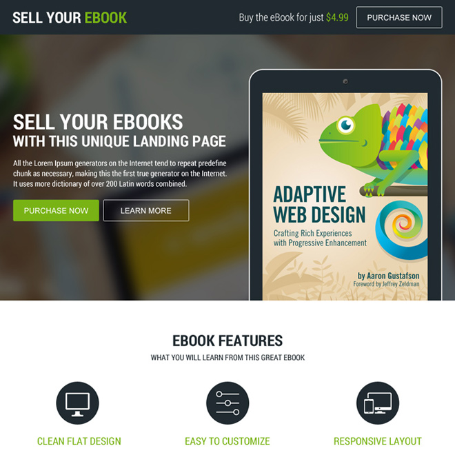 responsive ebook selling modern landing page design Ebook example