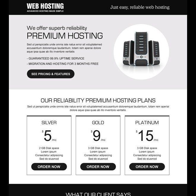 responsive reliable web hosting lander design Web Hosting example