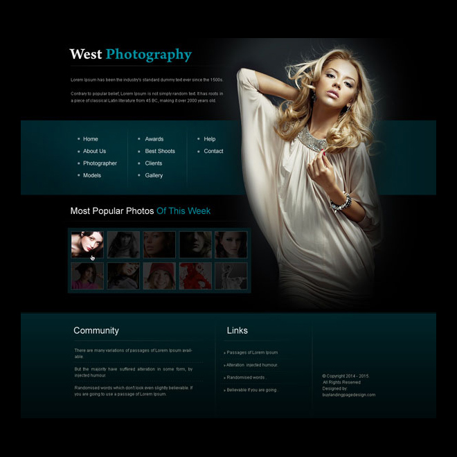 creative and appealing photography website template design psd Website Template PSD example