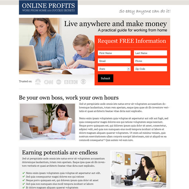 online profits 2 column effective and converting lander design to improve your conversion rates Work from Home example