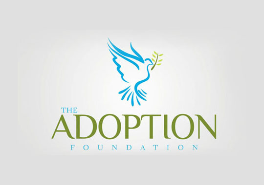 adoption foundation  example