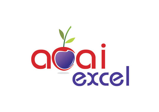 acai excel  example