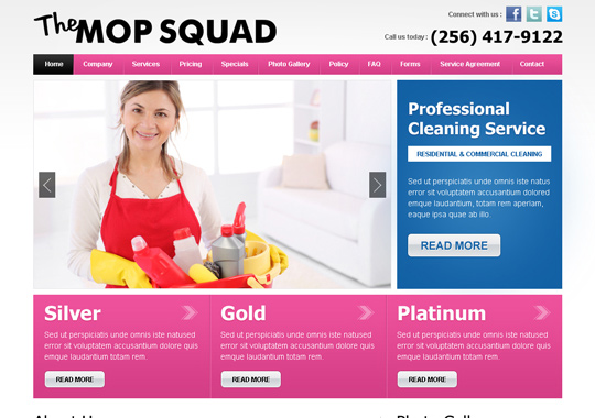 professional cleaning service  example