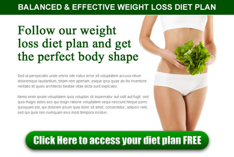 best weight loss diet plan ppv landing page design template