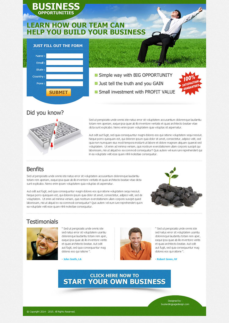 clean and converting business opportunity landing page design