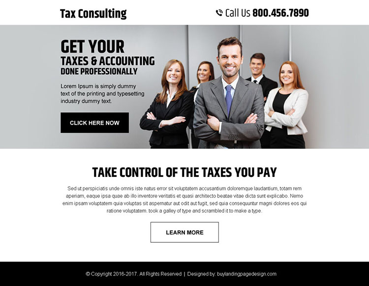 professional tax and accounting consultation service ppv landing page
