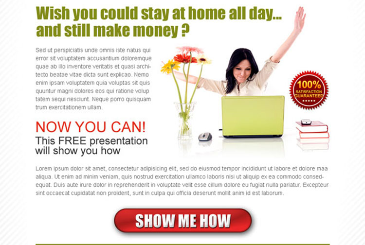 stay at home and make money online effective ppv lander design